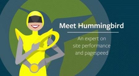 افزونه Hummingbird Pro افزایش سرعت سایت وردپرس نسخه ۱٫۷٫۰٫۲
